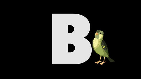 Letter B and Bird (foreground) Animation