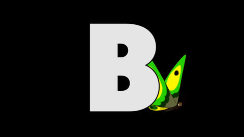 Letter B and Butterfly (background) Animation