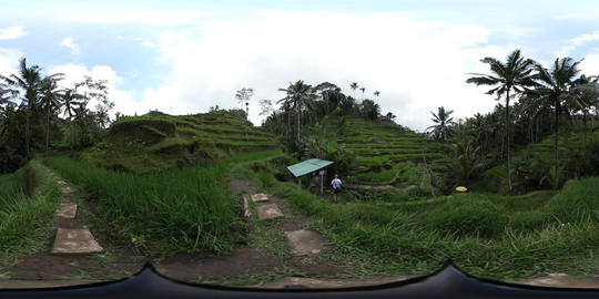 360VR video middle in Tegalalang Rice Terrace, Bali Footage