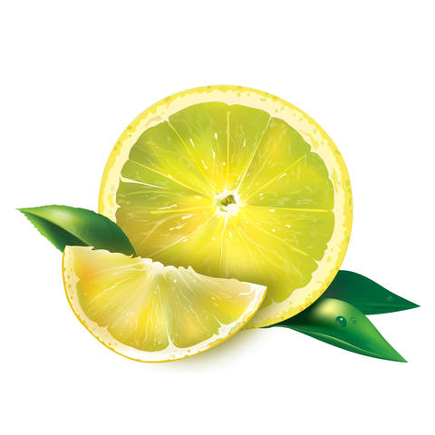 Lemon on white background フォト