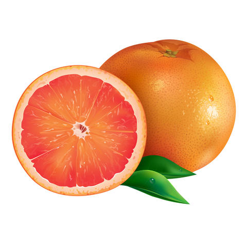 Grapefruit on white background フォト
