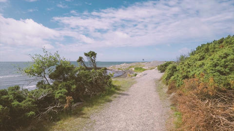 Nature scene pov walking by the sea Live Action