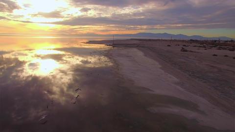 Beach Flight stock footage