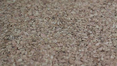 Cork Wood Texture Rotating Footage