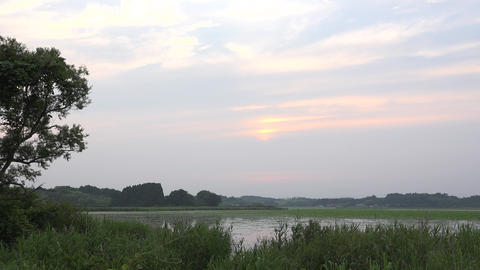 【4K】Evening Landscape Of The Japanese Marsh/日本の沼の夕景 stock footage
