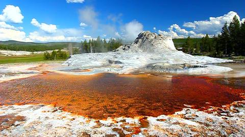 Castle Geyser Landscape Yellowstone Footage