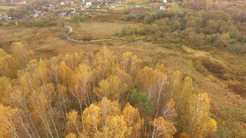 Aerial Shot Of autumn forest field small river ビデオ