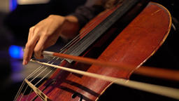 The cello bow plays on strings (close-up) Footage