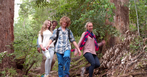 Family walking through forest downhill towards the camera Footage