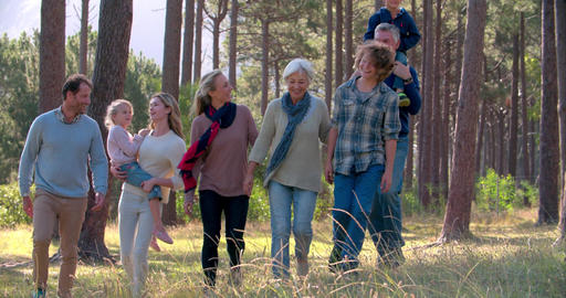 Multi generation family with four siblings walking outdoors Footage