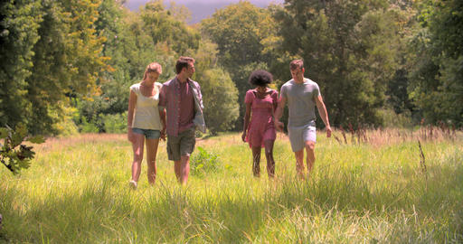 Two couples walking together in the countryside Footage