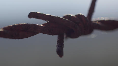 Rusty Barb Wire Macro Detail stock footage