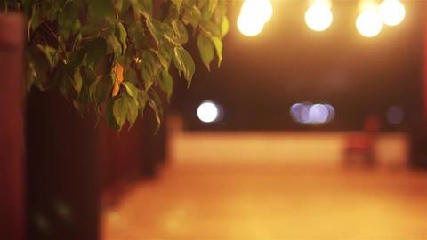 Evening Footage