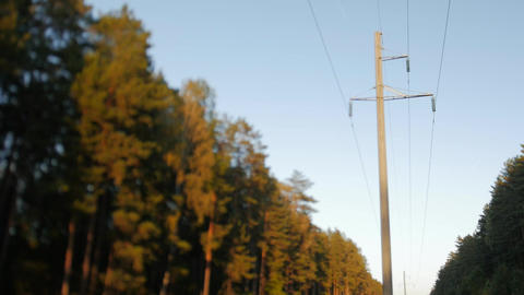 Electric poles in the forest Footage