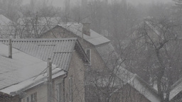 Snow (slow Motion )