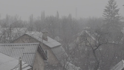 Snow (slow Motion ) 1