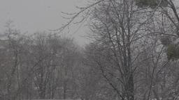 Snow 3840-2160