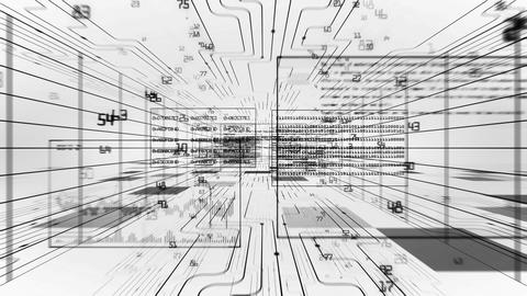 Flight through the Digital Code Stream. Black on White. Looped 3d animation. Dig Animation
