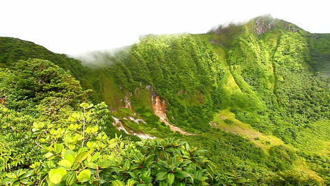 Saint Kitts Rainforest Crater Live Action