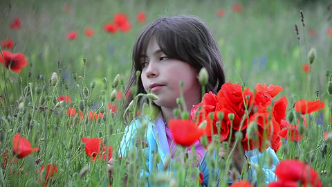 Girl sitting in a field with red poppies and gathers a bouquet for her mother 03 Footage
