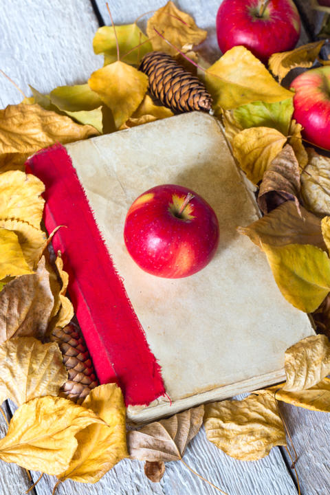 Back to school concept. Autumn leaves with old book and apple on wooden Photo