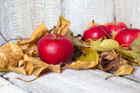 Apples on wooden table with autumn leaves on wooden background フォト