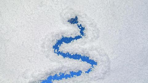 snow tree Stock Video Footage