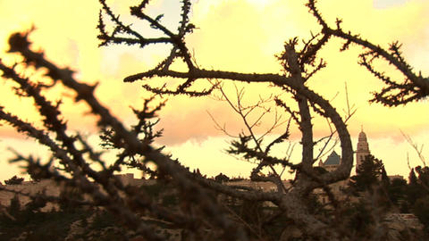 Old Jerusalem Stock Video Footage