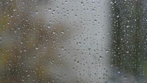 rain outside Stock Video Footage