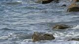 tidal bore Footage