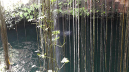 Dzonot Dzitnup Cenote in Mexico Yucatan 05 Stock Video Footage