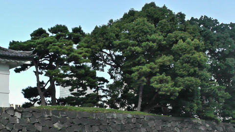 Tokyo Imperial Palace 06 pan Stock Video Footage