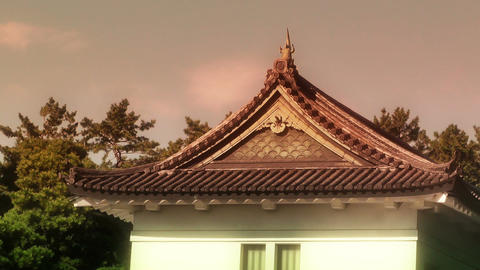 Tokyo Imperial Palace Japan 05 stylized Stock Video Footage