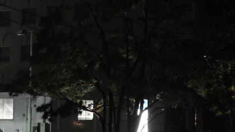 Typhoon in Yokohama Japan 07 handheld Stock Video Footage