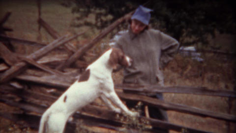 1946: Women petting shorthaired pointer hunting dog standing on fence Live Action