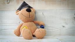 Teddy Bear Toy HD Stock Footage stock footage