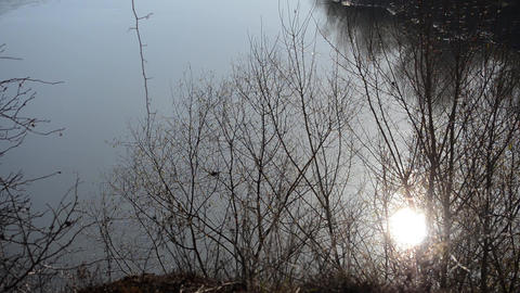 Sun reflecting through the branches of a tree in the dirty water of a river flow Footage