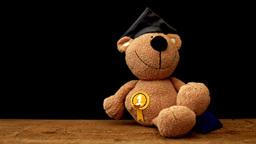 Teddy Bear Toy HD stock footage Footage