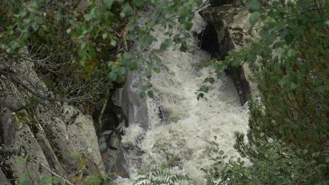 Creek Woods Italian Alps Slow Motion Footage