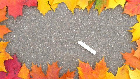 Woman put piece of chalk on empty asphalt, nice colorful frame from maple leaves Live Action
