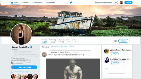 Twitter Promo V1 0 After Effects Template