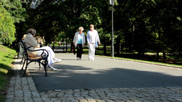 people (seniors) relax in the park (sitting and walking)- nature (grass and tree Footage