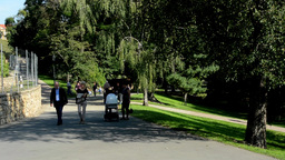 people walking in the park - nature (grass and trees) Footage