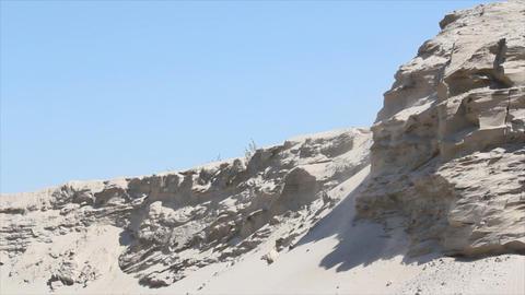 desert Footage