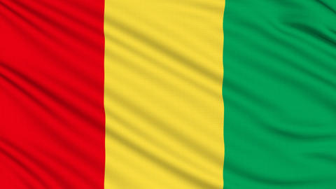 Guinea Flag, with real structure of a fabric Animation