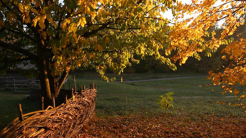 Indian summer in the countryside Image
