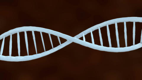 DNA helix in close up Animation