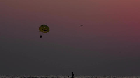 Parachute over the sea at sunset Footage