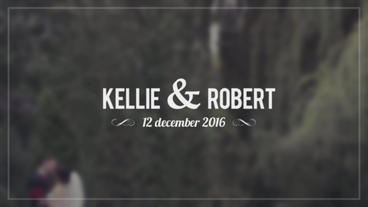 Wedding Titles After Effects Templates