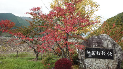 Naganoken-kiso-misokawa-dam-0001 Filmmaterial